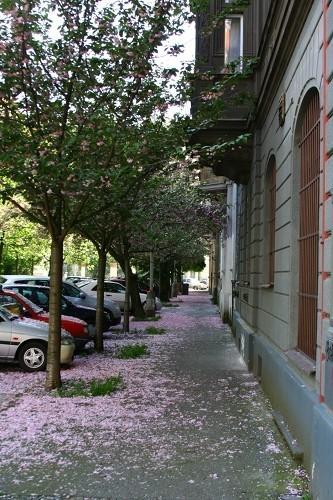 Изображение 48. Прага для жизни.. Изображение № 48.