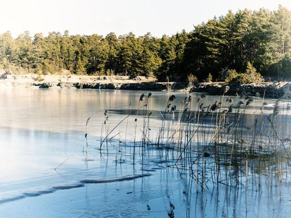 Озеро в северной части Готланда. Изображение № 48.