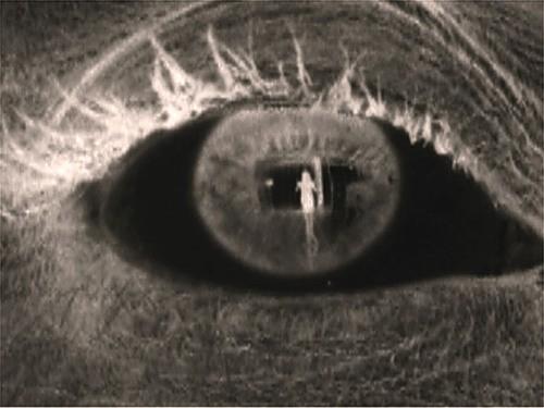 Benedetta Bonichi: Взгляд изнутри - рентген как искусство. Изображение № 7.