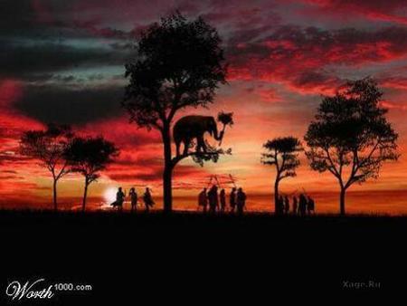 Какспрятать слона. Изображение № 5.