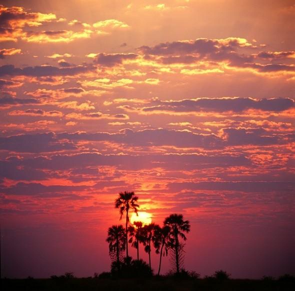 Ботсвана. Изображение № 1.