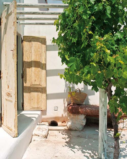 Загородный дом Monica Penaguiao. Изображение № 9.