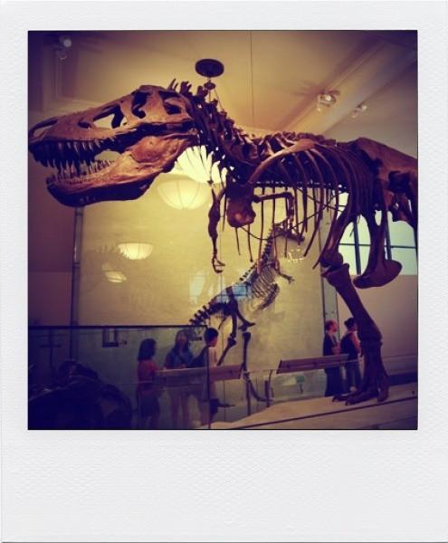 10 рекордных музеев мира. Изображение № 5.