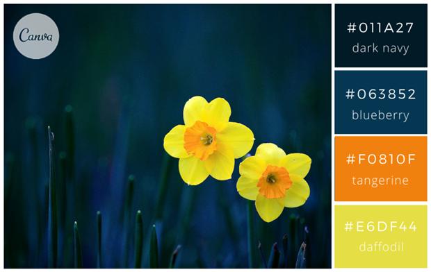 Сервис Canva предложил 100 удачных сочетаний цветов. Изображение № 16.