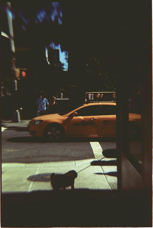New York. Изображение № 3.
