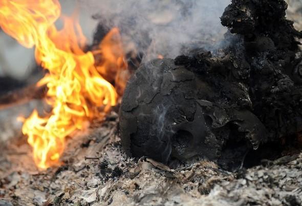 Разрушать природе на Гаити уже просто нечего!. Изображение № 34.