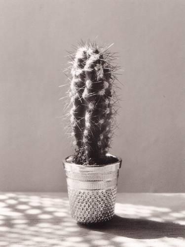 Изображение 119. Восемь фотографов сюрреалистов.. Изображение № 109.