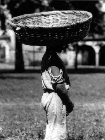 Tina Modotti. Изображение № 27.