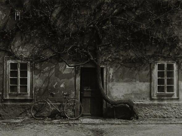 Изображение 26. По старому новые кадры от Stanko Abadic.. Изображение № 26.