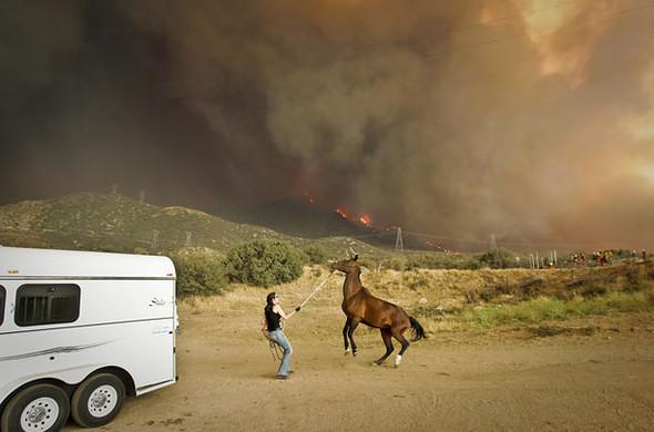 Калифорния вогне. Изображение № 4.