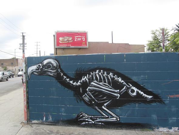 Животный стрит-арт от бельгийского граффитчика ROA. Изображение № 34.