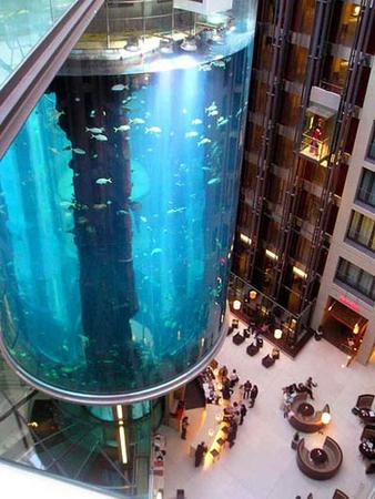 Самый «маленький» аквариум. Изображение № 2.