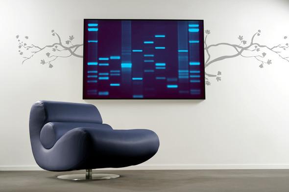 У вас красивая ДНК?. Изображение № 8.