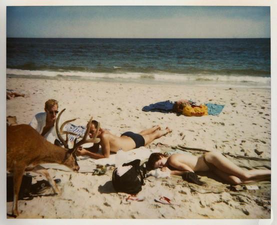20 фотоальбомов со снимками «Полароид». Изображение №33.