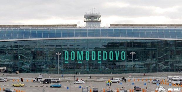 Редизайн: Новый логотип Домодедово. Изображение № 14.