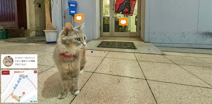 Для Хиросимы сделали Street View c кошками . Изображение № 1.