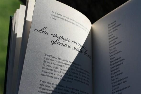 «Эхо» - долгожданный поэтический сборник Марии Кузьминой. Изображение № 3.