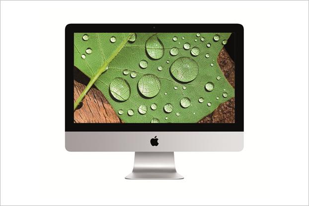 Apple улучшила дисплеи на всех новых моделях iMac. Изображение № 3.