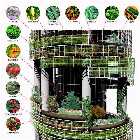 Овощные небоскрёбы. Изображение № 3.