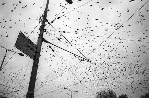 Фотограф Ванесса Виншип. Между Лондоном и Стамбулом. Изображение № 24.