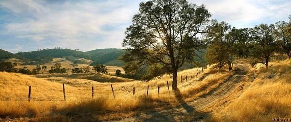 Lonna Tucke Landscapes (без машин). Изображение № 30.