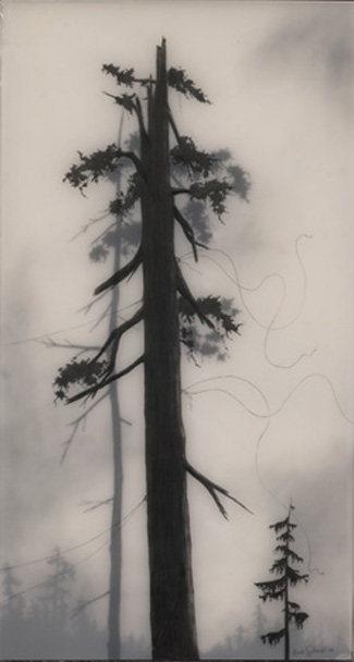 Невероятные работы Brooks Salzwedel. Изображение № 1.