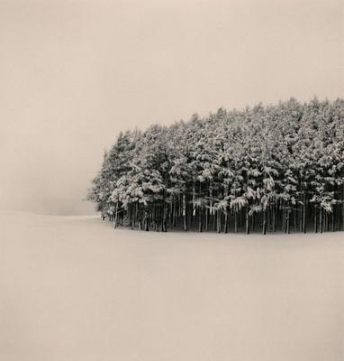 Изображение 11. 10 выставок весны.. Изображение № 12.