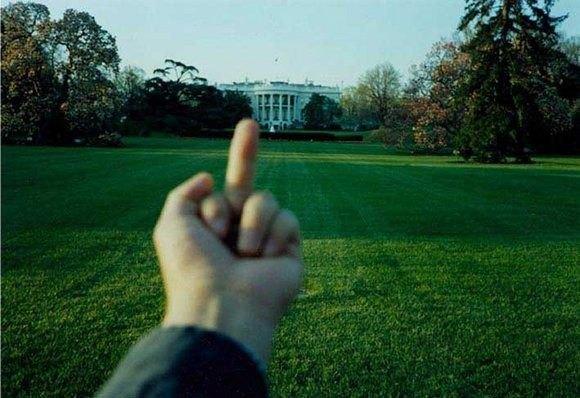 «Fuck Off», Белый дом. Изображение № 3.