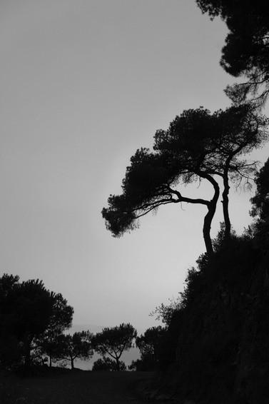 Черно-белые путешествия. Изображение № 93.