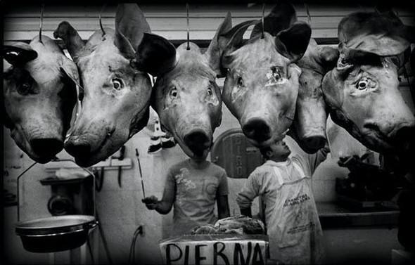 Чёрно-белый мир Sema Rubio. Изображение № 5.