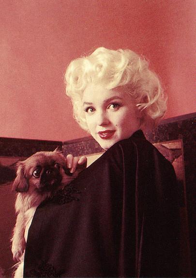 Изображение 59. Marilyn Monroe, pin-up girl.. Изображение № 59.