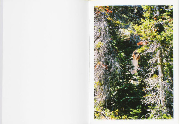 В дороге: 9 фотоальбомов о путешествиях. Изображение № 17.