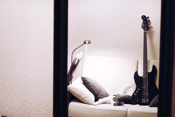 Бас-гитара Fender Jazz Bass. Изображение № 54.