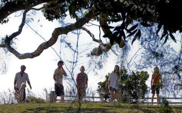 Премьера: «Дерево». Изображение № 7.