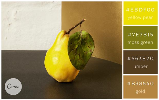 Сервис Canva предложил 100 удачных сочетаний цветов. Изображение № 47.