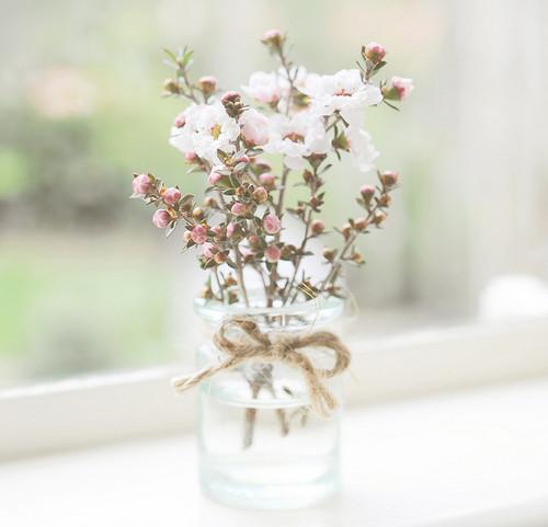 Изображение 2. Никогда не надо слушать, что говорят цветы. Надо просто смотреть на них и дышать их ароматом... Изображение № 2.
