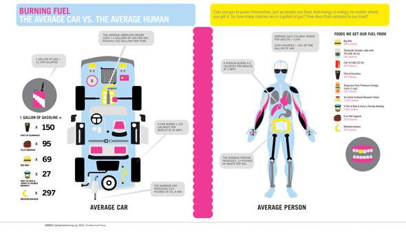 Удивительная инфографика. Актуальный тренд в дизайне. Изображение № 5.