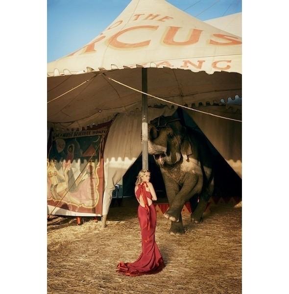 Изображение 38. Съемки: Harper's Bazaar, Marie Claire, Vogue и W.. Изображение № 38.
