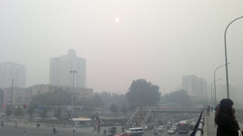 China towns. Изображение № 4.