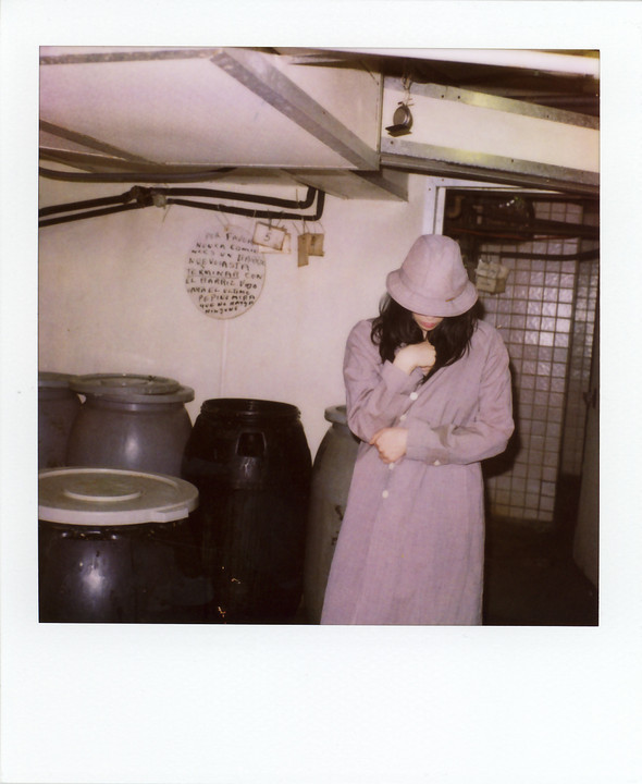 Scott Sternberg, старый поляроид иголливудские актрисы. Изображение № 26.
