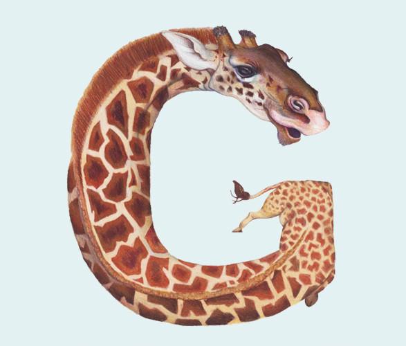 Животный алфавит. Изображение № 24.