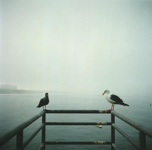 Фотограф Aaron Feaver. Изображение № 1.