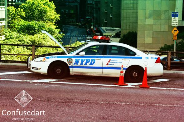 New-York. Изображение № 48.