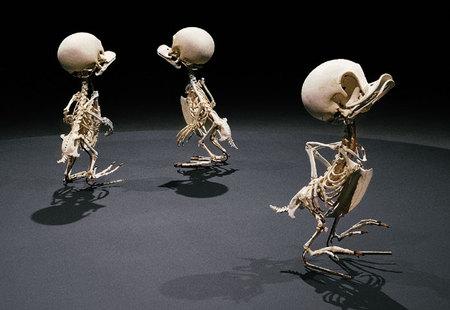 Мультяшные скелеты вшкафу ХюнгкуЛи. Изображение № 3.