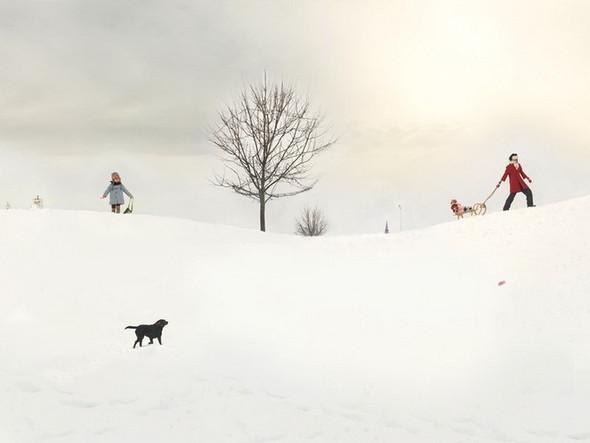 сюрреалистично-реальный мир Фотограф Julie Blackmon. Изображение №9.