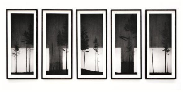 """Изображение 5. Выставка Риса Джонса """"Контрольная проверка"""" в галерее """"Триумф"""".. Изображение № 2."""