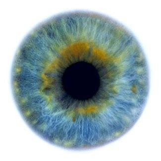 Фотограф Rankin — Eyescapes. Изображение № 5.