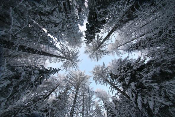 By Kари Liimatainen (самая шикарная зима). Изображение № 2.