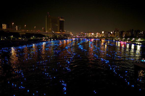 Огни большого города: 100 000 ламп-светлячков на фестивале Хотару. Изображение № 4.