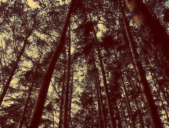 Моя зима. Изображение № 18.
